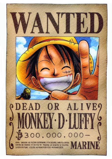Mugiwara's wanted ! 0537e20c