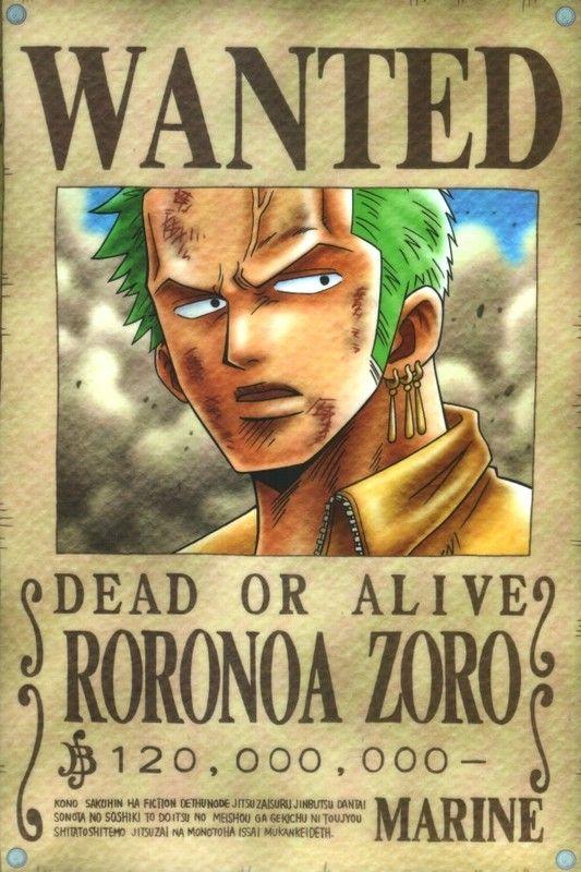 Mugiwara's wanted ! 41039c28