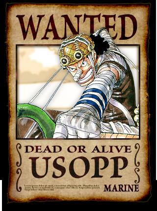 Mugiwara's wanted ! Cc0ca070
